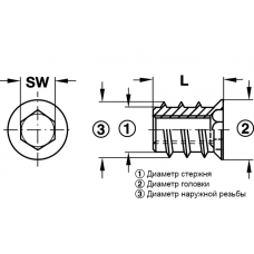 Муфта для ввинчивания M6 12 x 15 мм SW6 желтая хромированая сталь