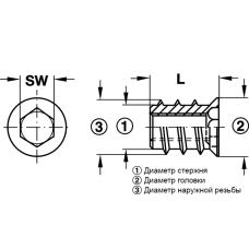 Муфта для ввинчивания M6 17 x 15 SW6 из желтой хромированной стали